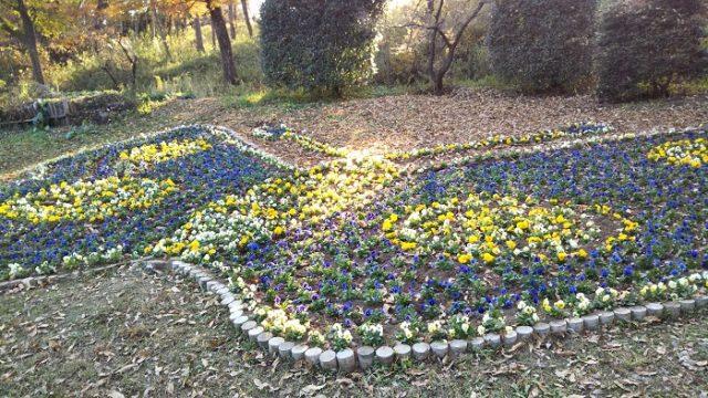 オオムラサキセンター前の花壇を撮影した画像