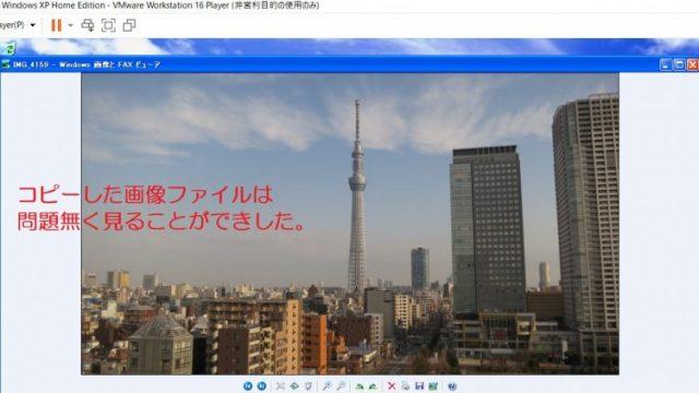 ゲスト側(WindowsXP)にコピーした画像ファイルを開いた写真